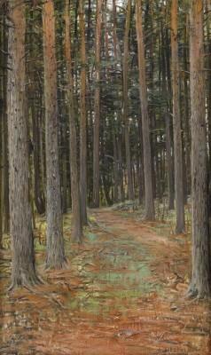 Skogen by Otto HESSELBOM