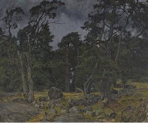 Solbelysta Tallar I Tjust Skärgård by Gottfrid KALLSTENIUS