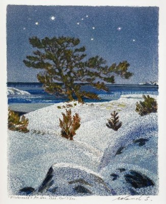 Vinternatt by Roland SVENSSON