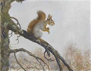 Ekorre På Trädgren by Mosse STOOPENDAAL