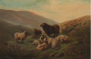 Highland Sheep by Robert WATSON