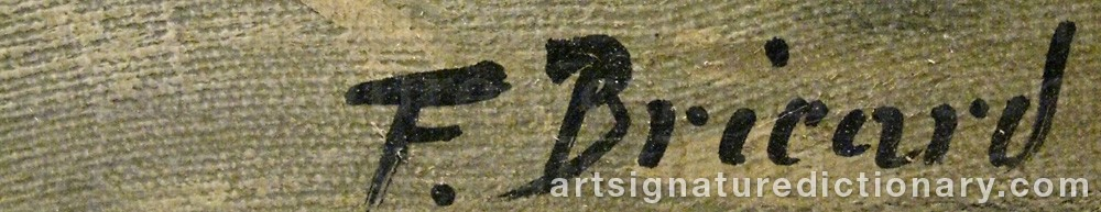 Signature by Francois Xavier BRICARD
